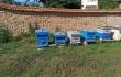 Продавам 5 пчелни семейства