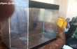 Продавам аквариум и всички принадлежности за него