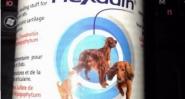 Флексадин - добавка за костно-ставния апарат на кучета