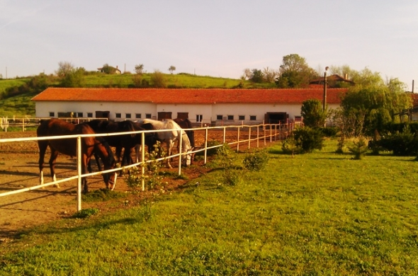 Продава животновъдна ферма УПИ 33600м2 БАРТЕР! Финансиране по ПРСР.
